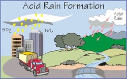 Acid rain short essay Yale Environment