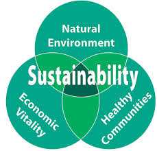 ESS Topic 1 4: Sustainability - AMAZING WORLD OF SCIENCE