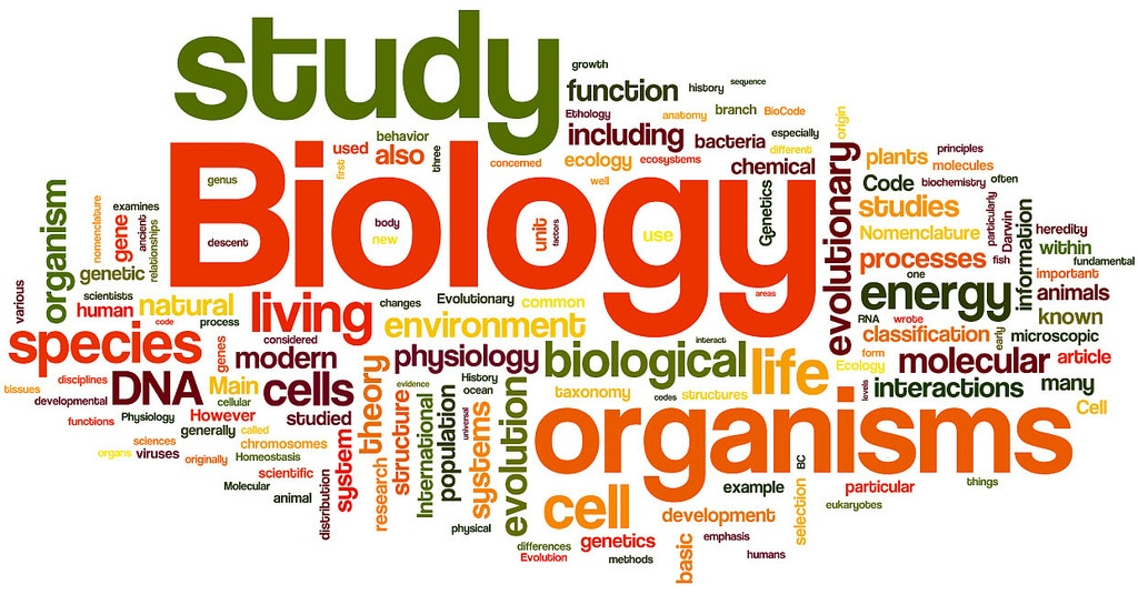 biology extended essay amazing world of science mr green
