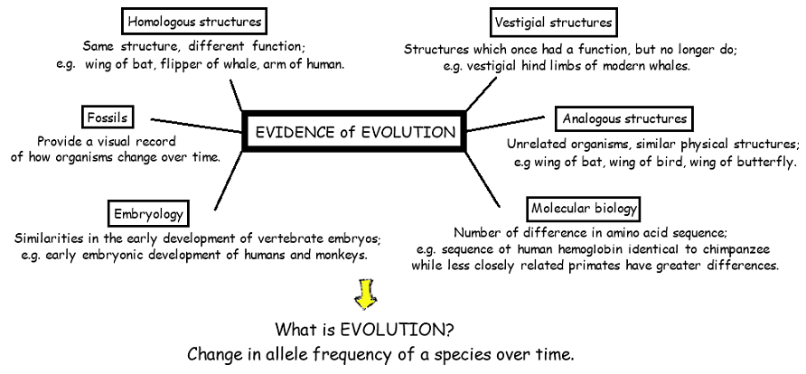Topic 5.1 Evidence for Evolution - AMAZING WORLD OF SCIENCE ...